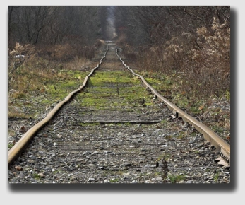 An abandoned rail line, much favored for conversion to bike and hiking trials. Justice Sotomayor darkly predicted in her dissent that the Brandt decision would wreak havoc on the rails-to-trails movement and cost millions in litigation.