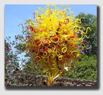"Perhaps an exotic balloon tree in your backyard? Sure ... just remember, it's probably not a ""natural growth"" on the land."