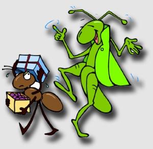 grasshopperb140314