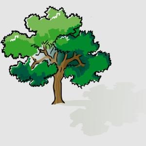 Mr. Griefield's tree was a sturdy, natural, plain vanilla oak.