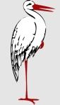 stork140305