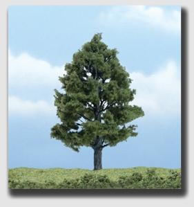 Sweetgum tree ... star of Fancher v. Fagella, making an encore appearance here.