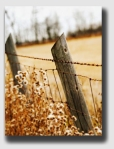 fence040407