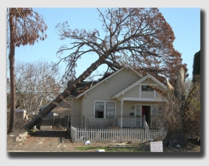Crunch.  And after the tree falls, the insurance company adds insult to injury.