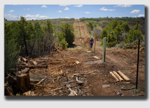 A long fenceline, not a lot of landmarks denoting the property line ... a 15-foot error was foreseeable, which is why Wendylou was so careful.