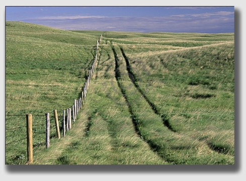 fence2-140506