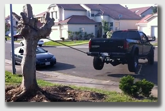 Tree vs. truck - who wins? Certainly not the people taking down the tree ...