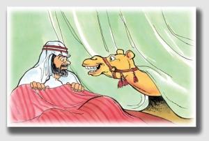 camelnose141003