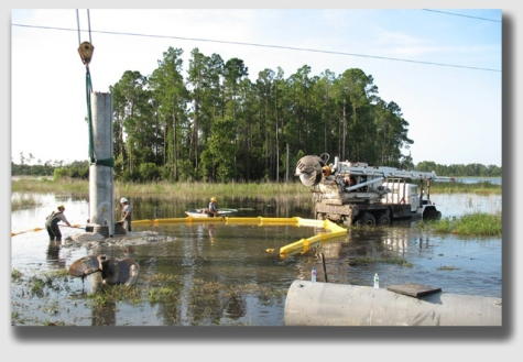 Swamppower1341118