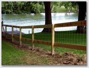 A common fence