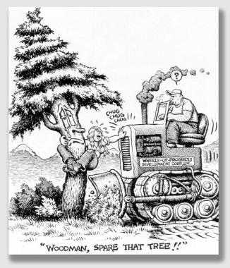 woodman150203