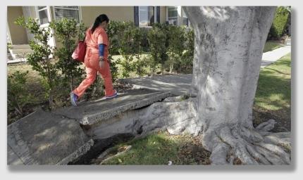 sidewalk150408