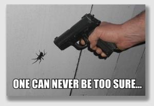Barnett said SoCal Edison should have killed the spiders.