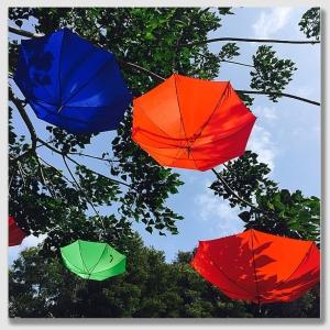 umbrella150521
