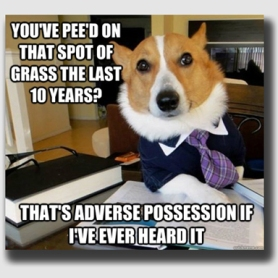 An adverse possession action can often devolve into a pissing contest ...