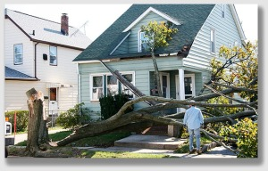 If you intentionally cut down one of your own trees, but it unintentionally falls on the house, you're still covered.  We're pretty sure.  But read the fine print.