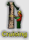 cruiseD151026