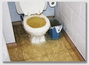 flush151015