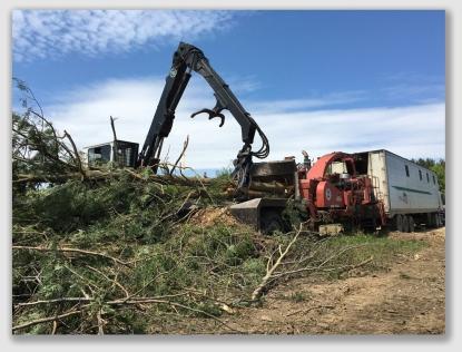 biomass160712