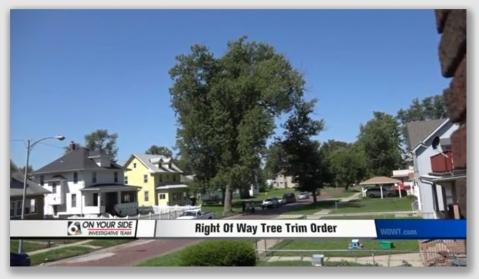 treelawn160725
