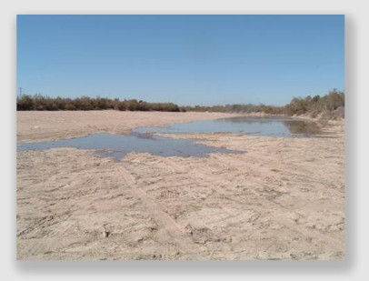 This is what the mighty Colorado used to look like when it met the Sea of Cortez, a victim of too many riparian rights holders taking too much water, A recent agreement between the U.S. and Mexico has improved matters, but not a lot.