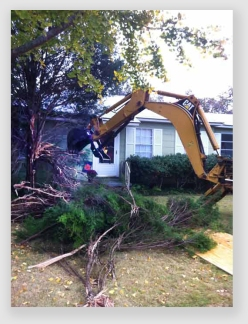 In case you missed it the past two days, this is a trackhoe removing a tree.
