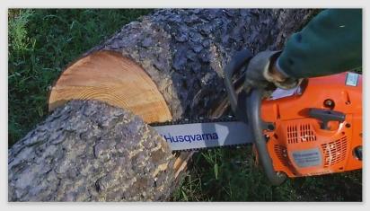 chainsaw161014