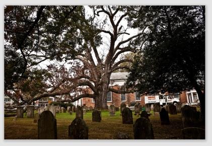 oak161017