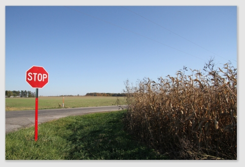 Corn to the corners - and no clear sightline.