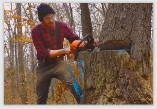 lumberjack170201