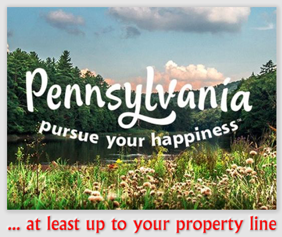 Pennsylvania | Tree and Neighbor Law For Homeowners and Professionals