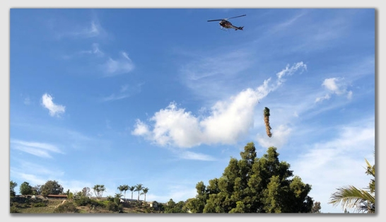 f75d8319 San Diego, California, KNSD-TV, December 26, 2018: Helicopters Airlift Palm  Trees Out of Urban Canyon in Tierrasanta